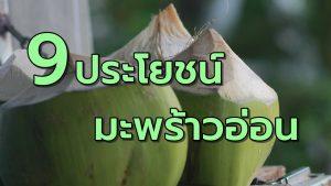 9ประโยชน์มะพร้าวอ่อน