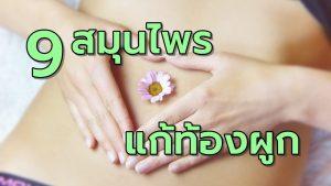 9สมุนไพรแก้อาการท้องผูก