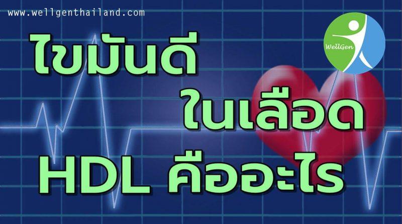 ไขมันดีHDLในเลือดคืออะไร